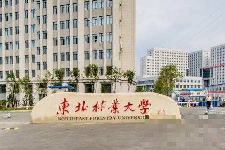 东北林业大学是双一流大学吗,有哪些双一流学科?